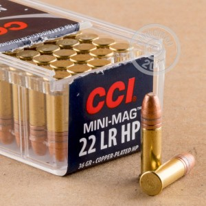 rounds of .22 Long Rifle ammo with copper plated hollow point bullets made by CCI.