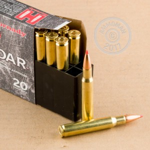 Image of 30.06 Springfield ammo by Hornady that's ideal for hunting wild pigs.