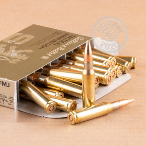 Image of 308 / 7.62x51 ammo by Sellier & Bellot that's ideal for training at the range.