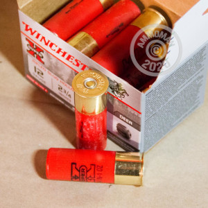Photograph of Winchester 12 Gauge ammo for shotgun shooters.