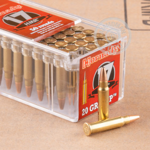 17 HMR ammo for sale at AmmoMan.com - 50 rounds.