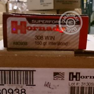 A photograph detailing the 308 / 7.62x51 ammo with Interbond bullets made by Hornady.