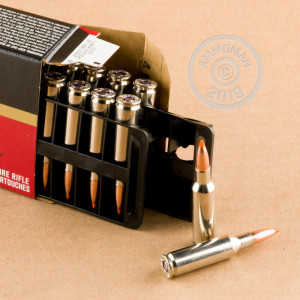 A photograph detailing the .224 Valkyrie ammo with Nosler Ballistic Tip bullets made by Federal.
