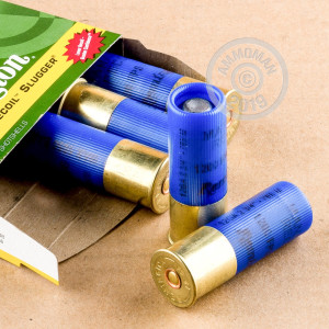 rounds ideal for hunting.
