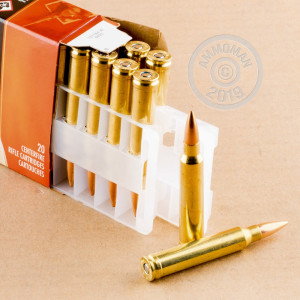 A photograph of 200 rounds of 190 grain 300 Winchester Magnum ammo with a Hollow-Point Boat Tail (HP-BT) bullet for sale.