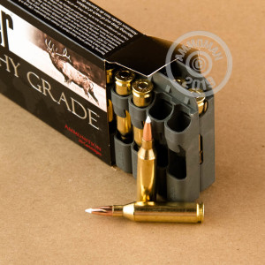 A photograph detailing the 243 Winchester ammo with Nosler AccuBond bullets made by Nosler Ammunition.