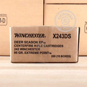 A photograph detailing the 243 Winchester ammo with Polymer Tipped bullets made by Winchester.