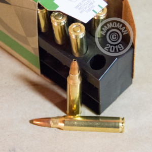 Image of 223 Remington ammo by Remington that's ideal for hunting varmint sized game, precision shooting.