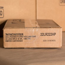 Image of bulk .22 Long Rifle ammo by Winchester that's ideal for hunting varmint sized game, training at the range.