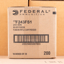 Image of Federal 243 Winchester rifle ammunition.